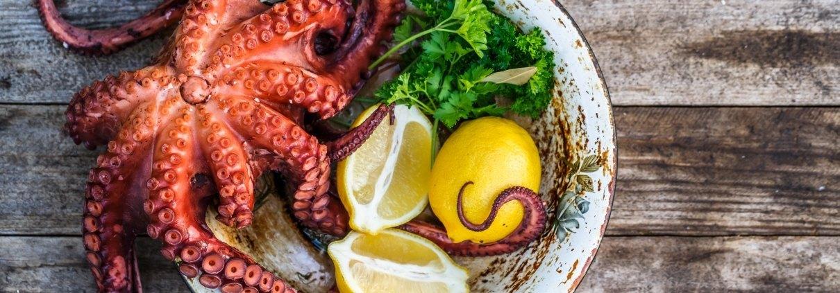 pulpo-gastronomia-restaurante-salamanca